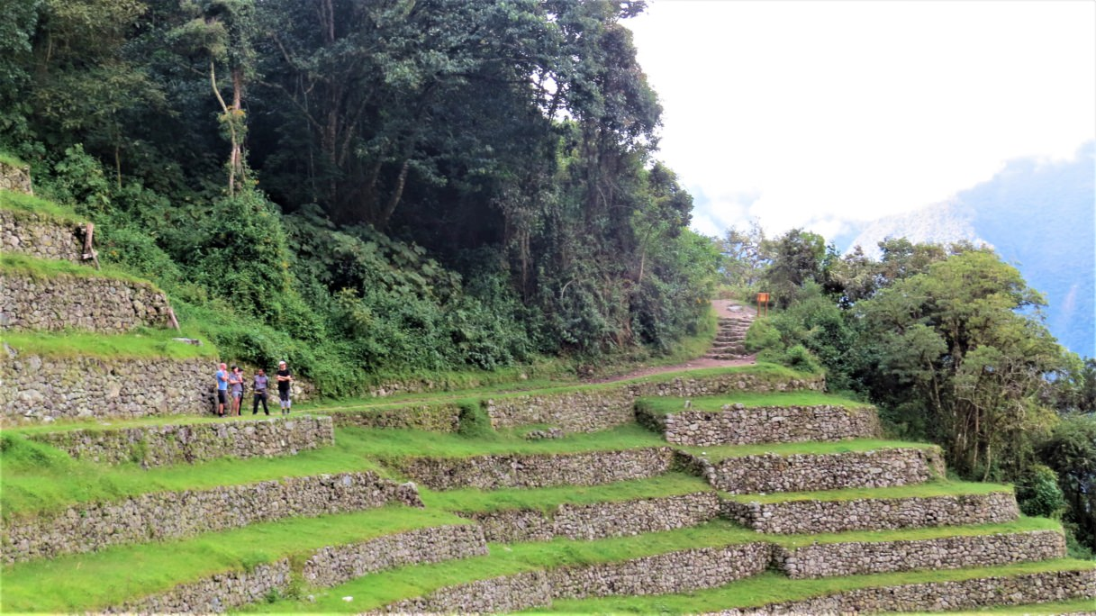Terraces in the Inca trail express